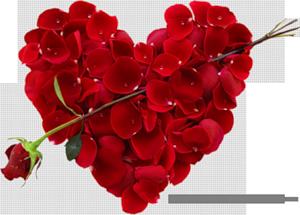 Лепестковое сердце 86353800_83039190_0_73314_b1953fe7_M (300x215, 96Kb)