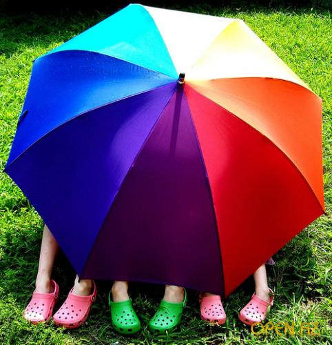 1310364639_colorful-colourful-crocs-cute-feet-rainbow (482x500, 46Kb)