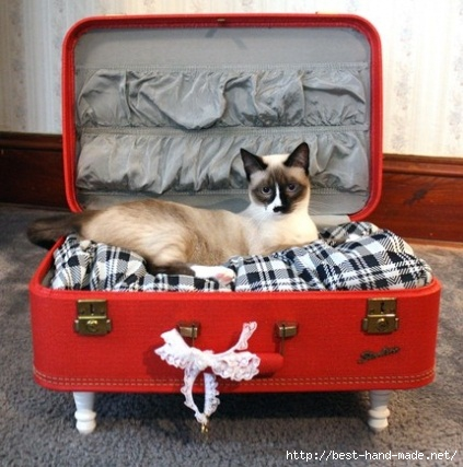 cat suitcase Haute Or Not Pets (423x427, 121Kb)
