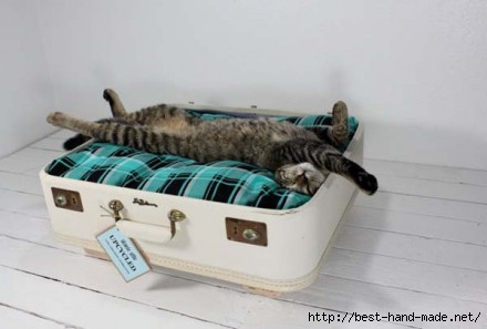 green-plaid-suitcase-bed-for-cats-e1341610392208 (440x297, 54Kb)