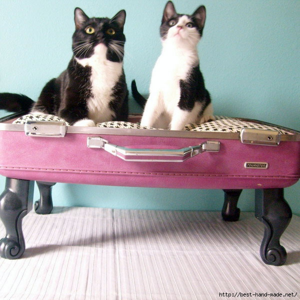 Pink-Suitcase-for-Sweet-Tuxedo-Cat (600x600, 211Kb)