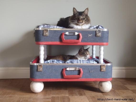 repurposed-suitcase-cat-bunkbed (570x427, 101Kb)