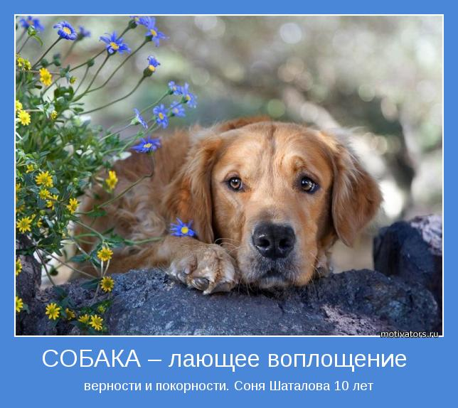 1345070512_krasivye-i-mudrye-motivtaory-pro-druzey-11 (644x574, 61Kb)