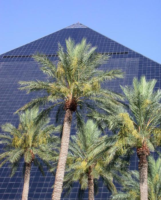 Отель Luxor hotel и Casino, Las Vegas - Пожить в пирамиде. 75453
