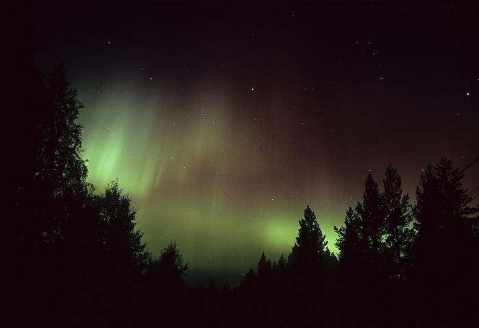 Лапландия1 (700x478, 49Kb)