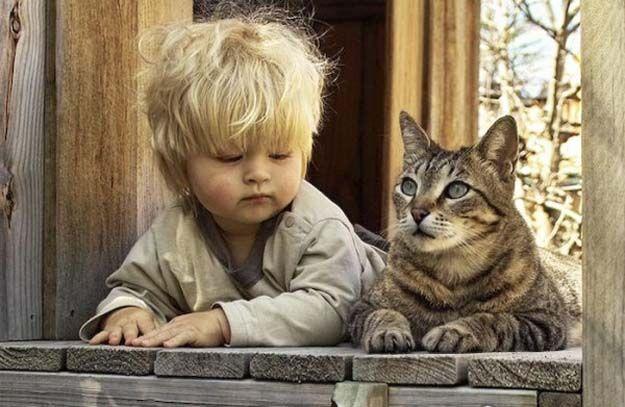 Кот с мальчиком (625x407, 59Kb)