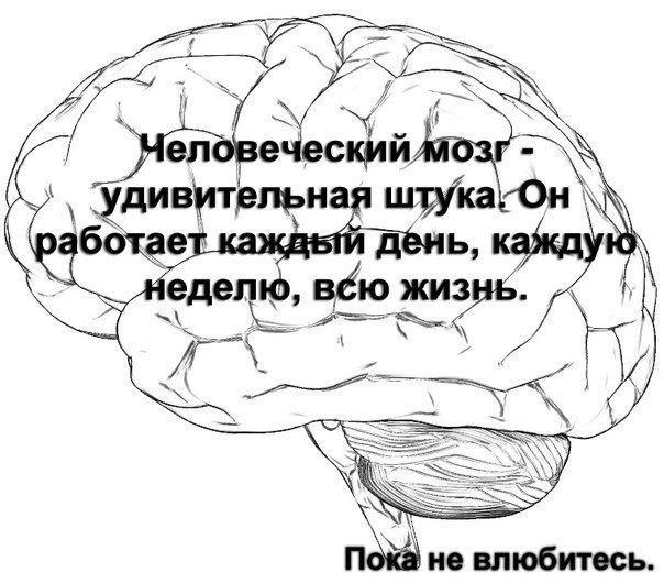 1350816474_18h_kTzNgA (604x531, 70Kb)