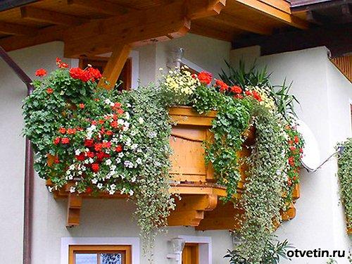 balkon (78) (500x375, 70Kb)