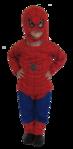 Превью человек-паук (343x700, 186Kb)