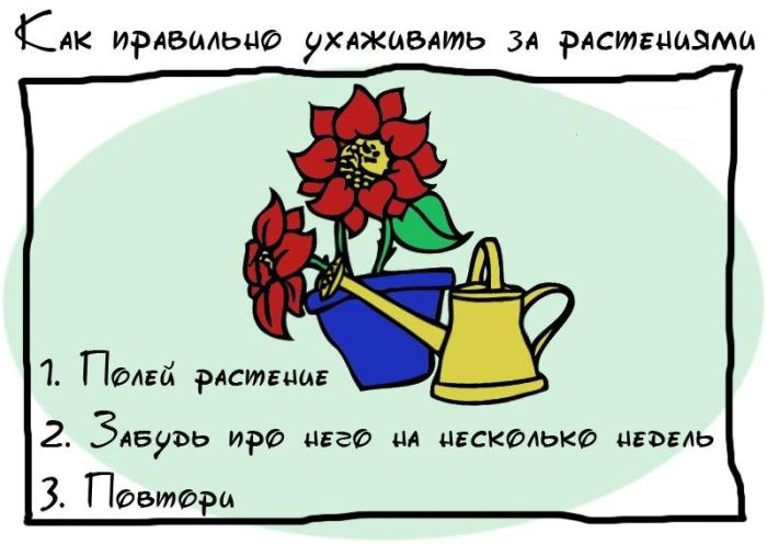 1348102599_soveti_18 (700x496, 45Kb)