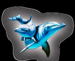 3996605_delfini (263x215, 63Kb)