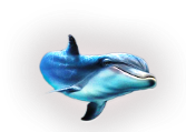 3996605_delfini13 (167x119, 26Kb)