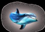 Превью дельфины на прозрачном слое (13) (167x119, 26Kb)