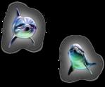Превью дельфины на прозрачном слое (19) (380x316, 83Kb)