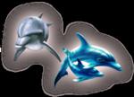 Превью дельфины на прозрачном слое (22) (337x243, 87Kb)