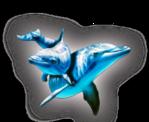 Превью дельфины на прозрачном слое (263x215, 63Kb)