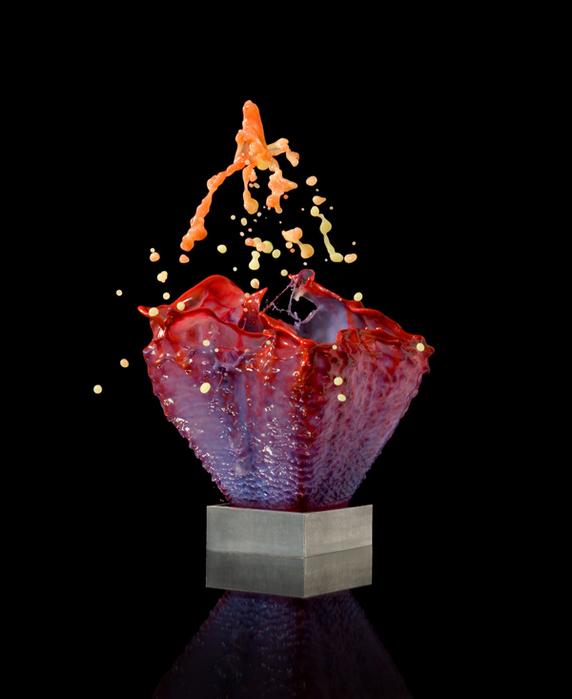 Jack Long креативные фото цветы 1 (572x700, 118Kb)