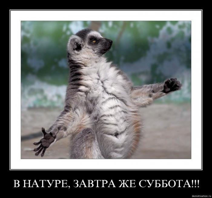 кисти для фотошопа фата: