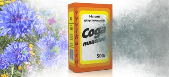 2222299_soda_dlya_nog (550x250, 161Kb)