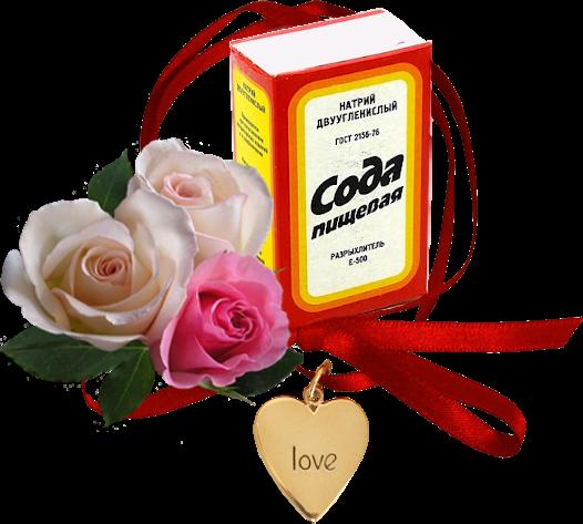 Сода для пользы огорода. . Обсуждение на LiveInternet - Российский Сервис Онлайн-Дневников