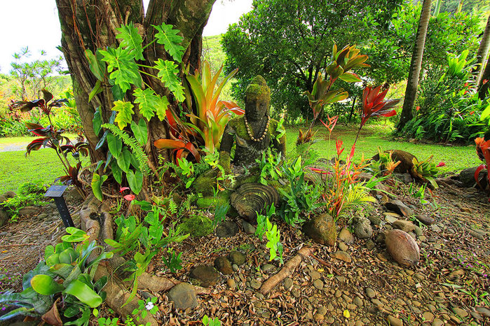 сады острова мауи фото (700x466, 236Kb)