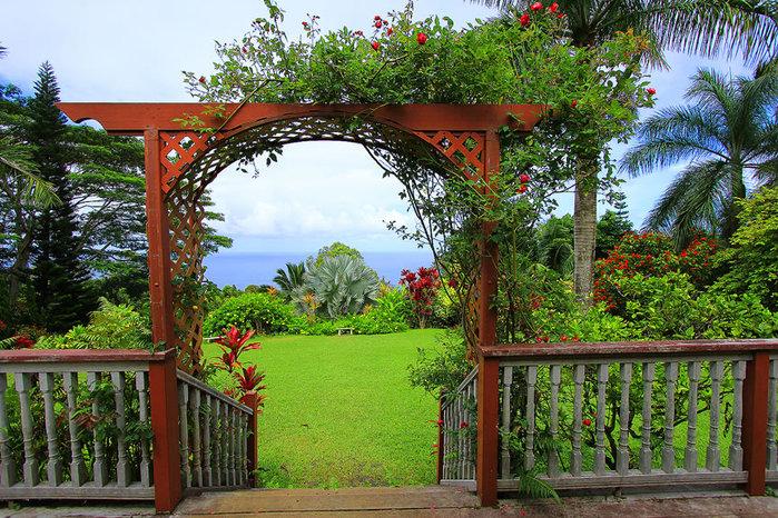 сады острова мауи фото 4 (700x466, 189Kb)