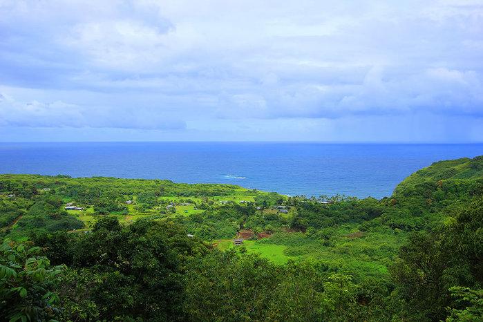 сады острова мауи фото 14 (700x466, 94Kb)