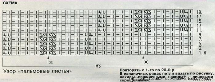 uzor-palmovii-listija1 (700x267, 159Kb)