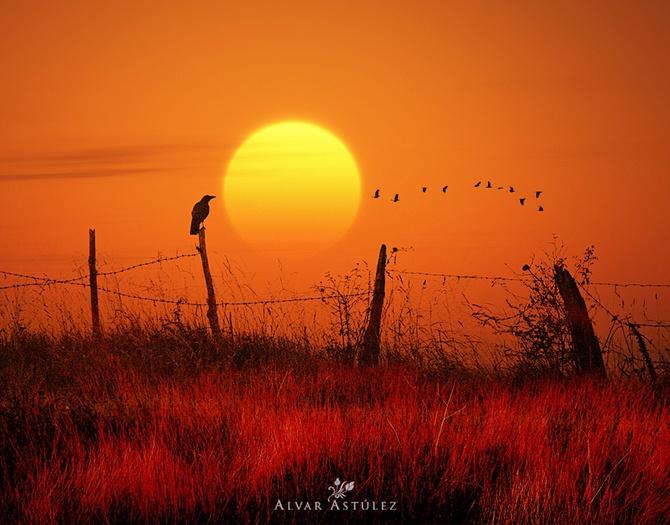 закат фото Alvar Astúlez 2 (670x525, 137Kb)