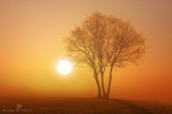 туман фото Alvar Astúlez 2 (670x446, 68Kb)