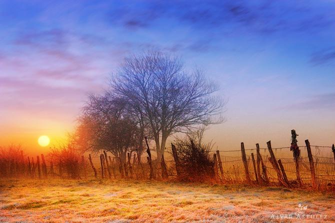 туман фото Alvar Astúlez 6 (670x446, 126Kb)