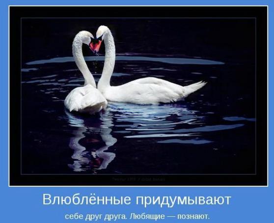 1351707154_1tpapte (558x454, 52Kb)