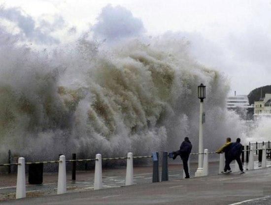 cunami (550x416, 30Kb)