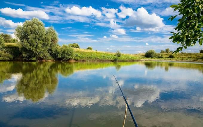Соскучился за рыбалкой. Заеду к родителям и обязательно схожу по рыбку.