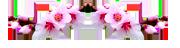 0_9888b_5d06df56_M (180x48, 15Kb)