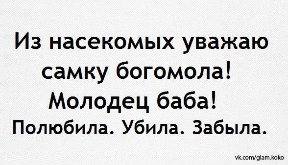 _VTuHslkCyw (588x337, 56Kb)