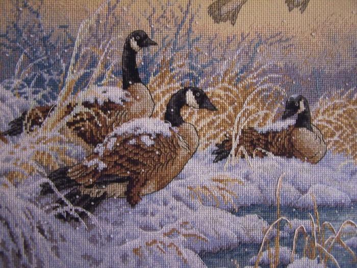 Дикие утки(вышивка крестом