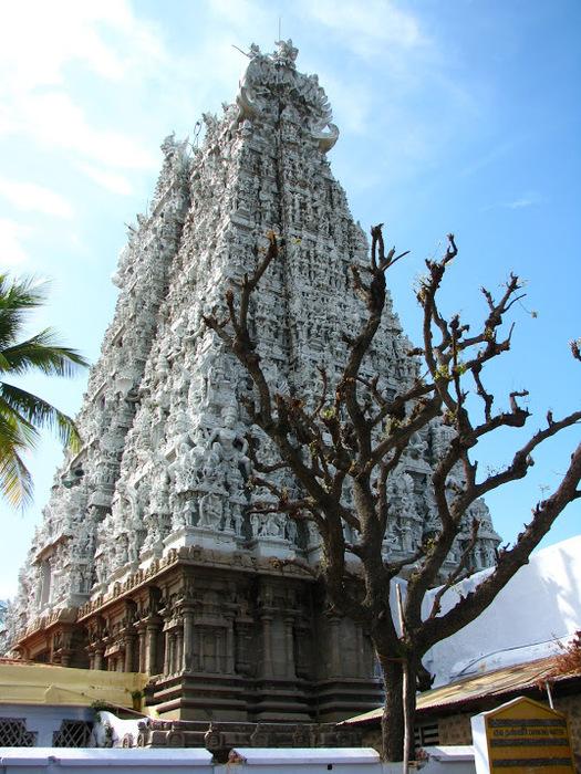 Сучиндрам (Suchindram temple) – храм всех Учителей. 82525