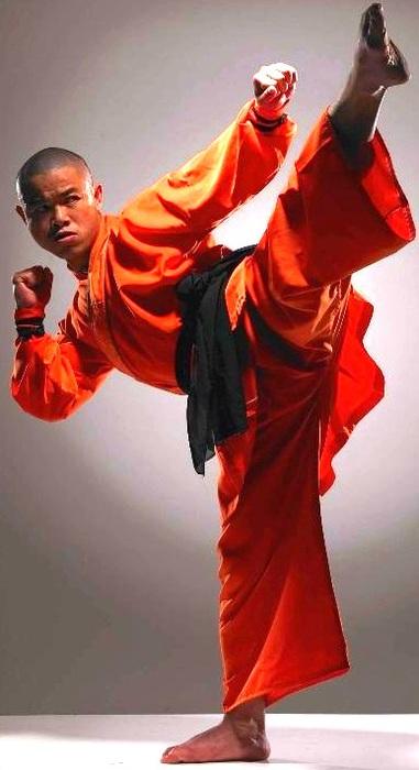 Martial-Arts-Training-in-Shaolin-Temple10 (381x700, 72Kb)