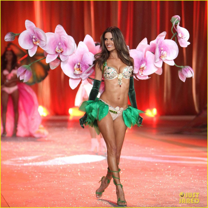 adriana-lima-alessandra-ambrosio-victorias-secret-fashion-show-2012-05 (700x700, 130Kb)
