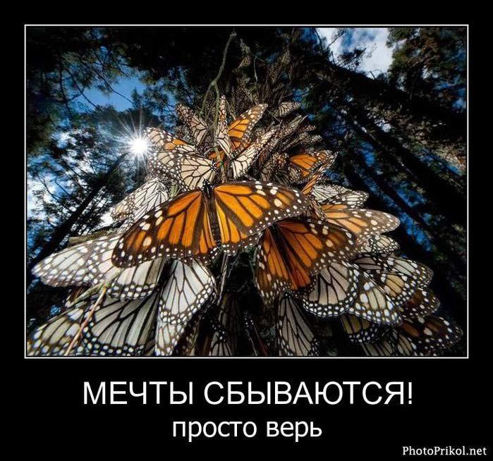 1306490593_demotivatory-so-smyslom-3 (700x654, 86Kb)