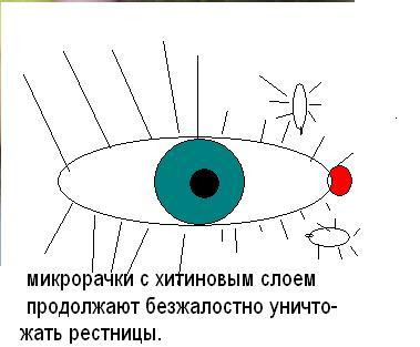 Изображение-45 021-1 (379x313, 19Kb)