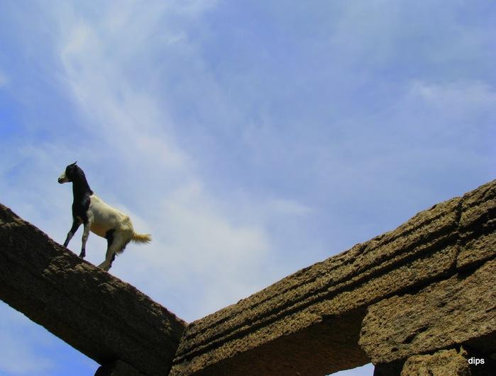 Исторический комплекс Махабалипурам 22041