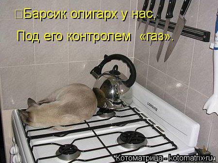 kotomatritsa_-L (449x336, 40Kb)