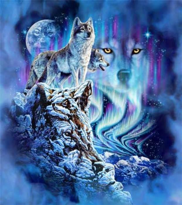 Волки (621x700, 64Kb)