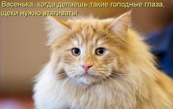 5046305_x_4352ac11 (604x382, 45Kb)