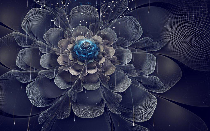 фрактальные цветы картинки Сильвия Кордедда 3 (700x437, 274Kb)
