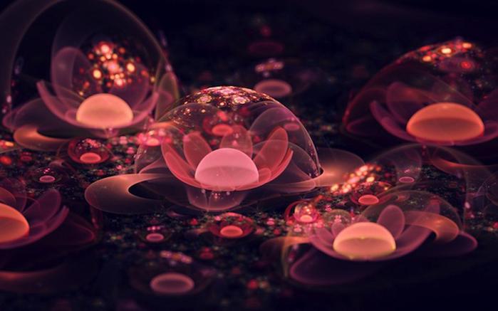 фрактальные цветы картинки Сильвия Кордедда 7 (700x437, 232Kb)