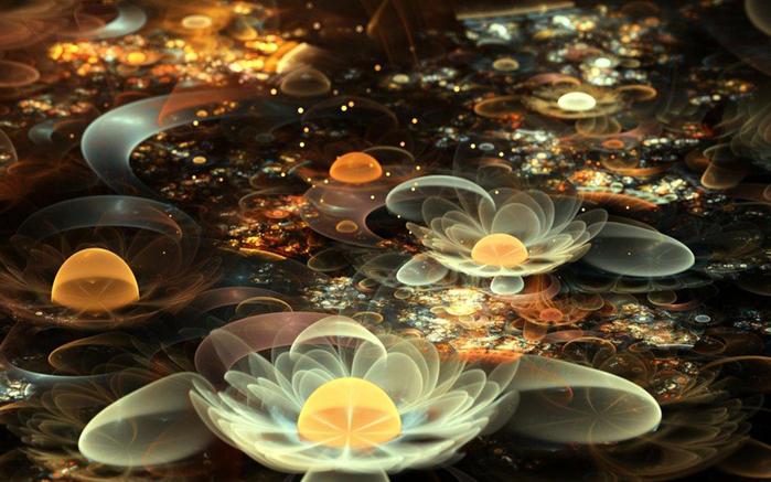 фрактальные цветы картинки Сильвия Кордедда 9 (700x437, 326Kb)