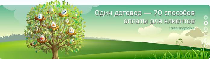 агрегатор электронных платежей/4171694_elektronnie_plateji_onlain (700x196, 23Kb)